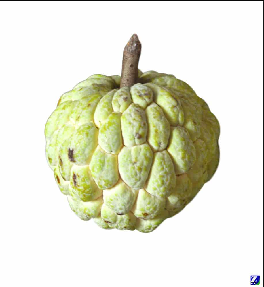 Custard Apple (Fresh...