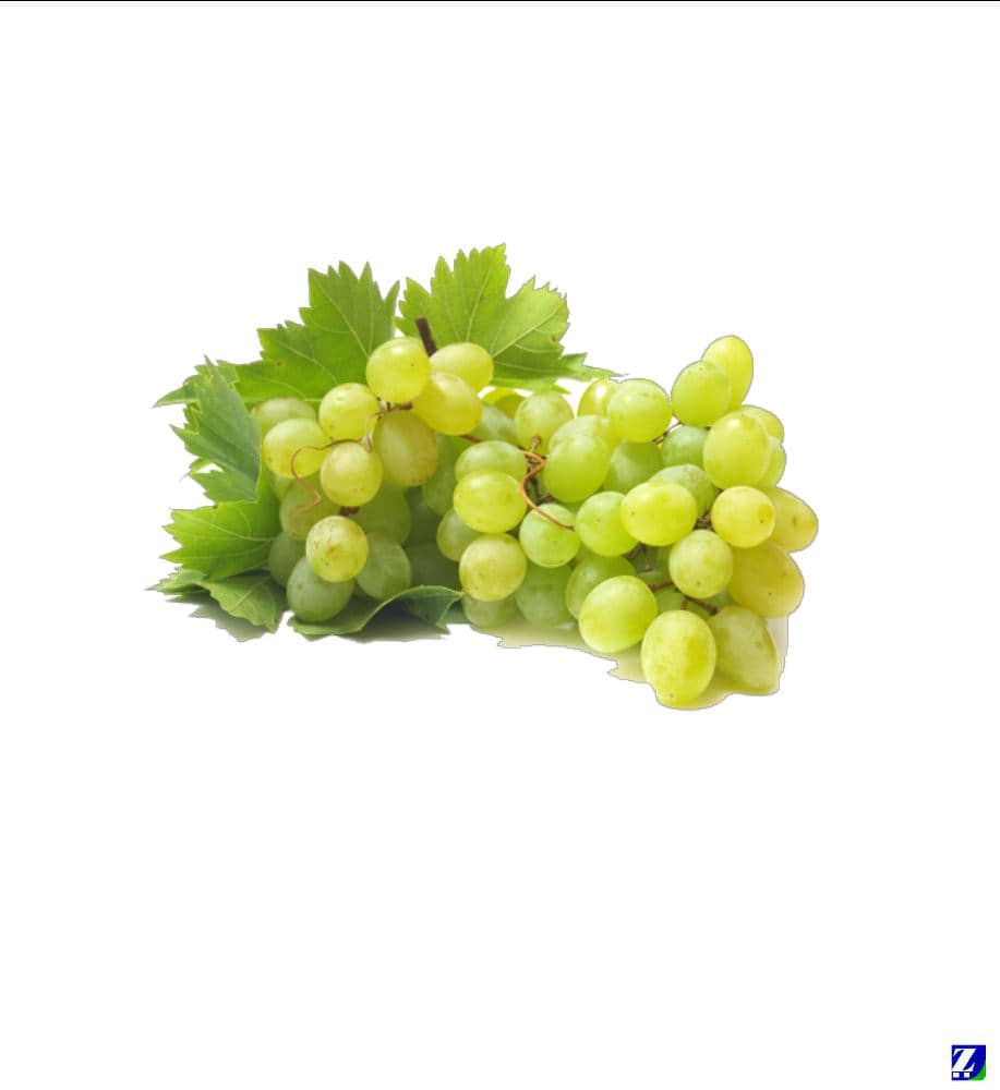 Grapes (Fresh)