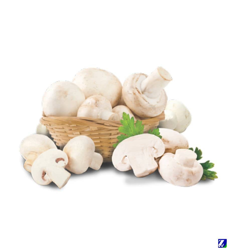 Mashroom (White & Fresh)