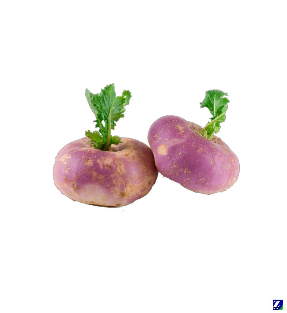 Turnip (Fresh)